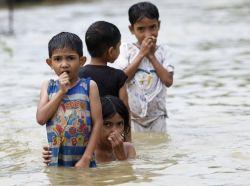 Ketika Kutu Air Menyerang Saat Banjir, Ini Solusinya!
