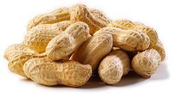 Manfaat Makan Kacang Tanah