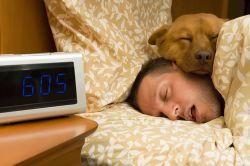Dampak Buruk Tidur Berlebihan, Dapat Picu Depresi