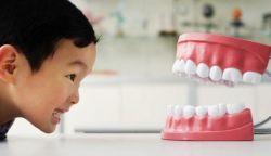Makanan yang Dapat Mencegah Gigi Berlubang