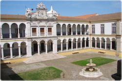 Mau Beasiswa Gratis Arkeologi di Portugal?