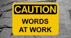 Pengertian Frasa Appositive pada Bahasa Inggris