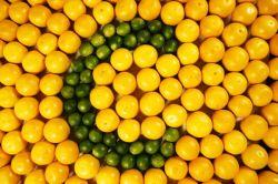 Mari! Mengungkap Fakta Manfaat dari Vitamin C