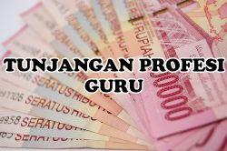 Pembayaran TPG Paling Lambat 30 April 2014
