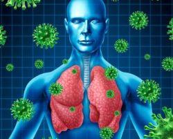 Apa yang di Maksud dengan Virus Mers?