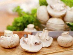 Manfaat Jamur untuk Kesehatan yang Perlu Diketahui