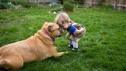 Bahaya Mencium Hewan Peliharaan!