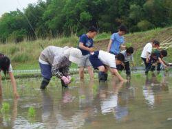 Dalam Mengisi Waktu Liburan, Delapan Siswa Ikut Praktik Bertani