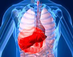 Apa Itu Hepatitis B?