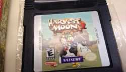 Harvest Moon 2 GBC Dirilis di Nintendo Eshop