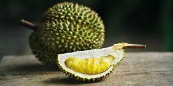 Perawatan Kecantikan Kulit dengan Buah Durian