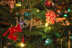 Tidak Hanya sebagai Penghias, Hiasan Natal Ini Punya Makna Tersendiri Lho!