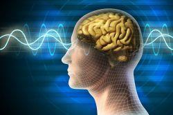 Brainwave, Aplikasi Musik Relaksasi untuk Booster Kinerja Otak
