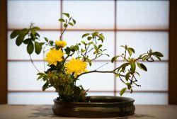 Ikebana, Seni Merangkai Bunga Elegan dari Jepang
