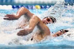 Perbedan-Perbedaan Setiap Gaya pada Olahraga Renang