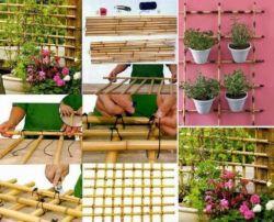 Bambu untuk Menghias Taman
