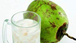 Cegah Batu Ginjal dengan Minum Air Kelapa