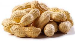 Manfaat Dibalik Konsumsi Kacang Tanah untuk Kesehatan