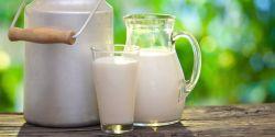 Wah! Inilah Manfaat Sehat Konsumsi Susu Dingin bagi Tubuh