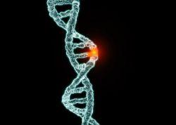 Cacat Genetik pada Bayi, Faktor Resiko dan Deteksi Dini