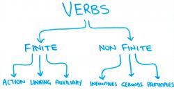 Perbedaan Finite Verb dan Nonfinite Verb