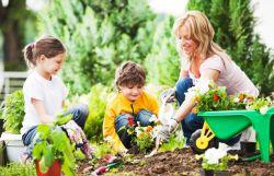 Liburan Sambil Mendidik Anak, Kenapa Tidak?