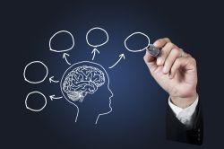 Ini Dia Peran Psikologi dalam Bidang Pendidikan