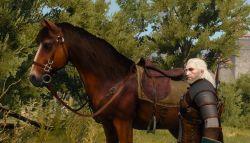 Ulah Aneh Roach dalam Game The Witcher III: Wild Hunt Akan Dibenahi Melalui Update 1.07