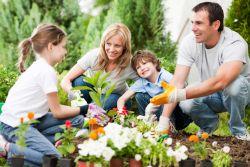 Coba Berkebun dan Dapatkan Manfaat Sehatnya!