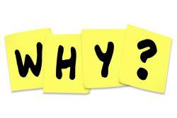Kata Tanya Why dalam Noun dan Adverb