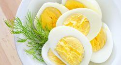 Berbagai Manfaat Telur bagi Kesehatan