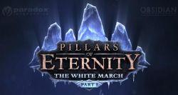 Resmi Rilis di Bulan Maret, Pillars of Eternity Sukses Terjual Sebanyak Lebih dari 500.000 Kopi!