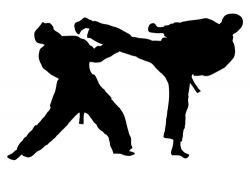 Sejarah dan Pengertian Olahraga Taekwondo
