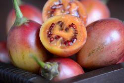 Manfaat Sehat dari Terong Belanda