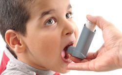 Pentingnya Mengenali Penyakit Asma dan Bahayanya