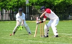 Teknik Bermain Olahraga Kriket