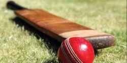 Perlengkapan yang Digunakan Olahraga Kriket