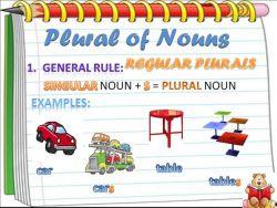 Jenis dari Plural Noun