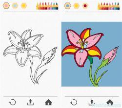 Belajar Mewarnai dengan Menyenangkan Bersama Colorfy