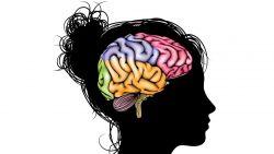 Dari ke-7 Tipe Kecerdasan Berikut, Termasuk yang Manakah Anda?