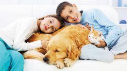 Manfaat Dibalik Merawat Hewan Peliharaan bagi Anak