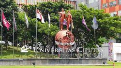 Beasiswa Manajemen Sistem Informasi di Universitas Ciputra