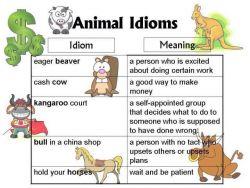 Penggunaan Idiom Berhubungan dengan Animal