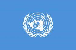 Ingin Magang di Kantor PBB, New York? Simak Beasiswa Ini!