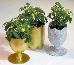Membuat Pot Bunga Unik dan Cantik dari Botol Plastik