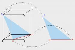 Materi Kelas 10: Jarak pada Dimensi (Bagian 2)