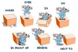 Penggunaan Preposition of dalam Bahasa Inggris