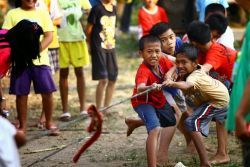 Yuk Sambut Hari Ulang Tahun Republik Indonesia Bersama Si Kecil