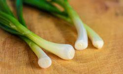 Bawang Prei dan Segudang Manfaatnya bagi Kesehatan Tubuh