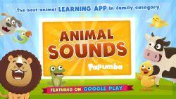 Mengenal Suara Hewan Semakin Seru dengan Papumba Animal Sound